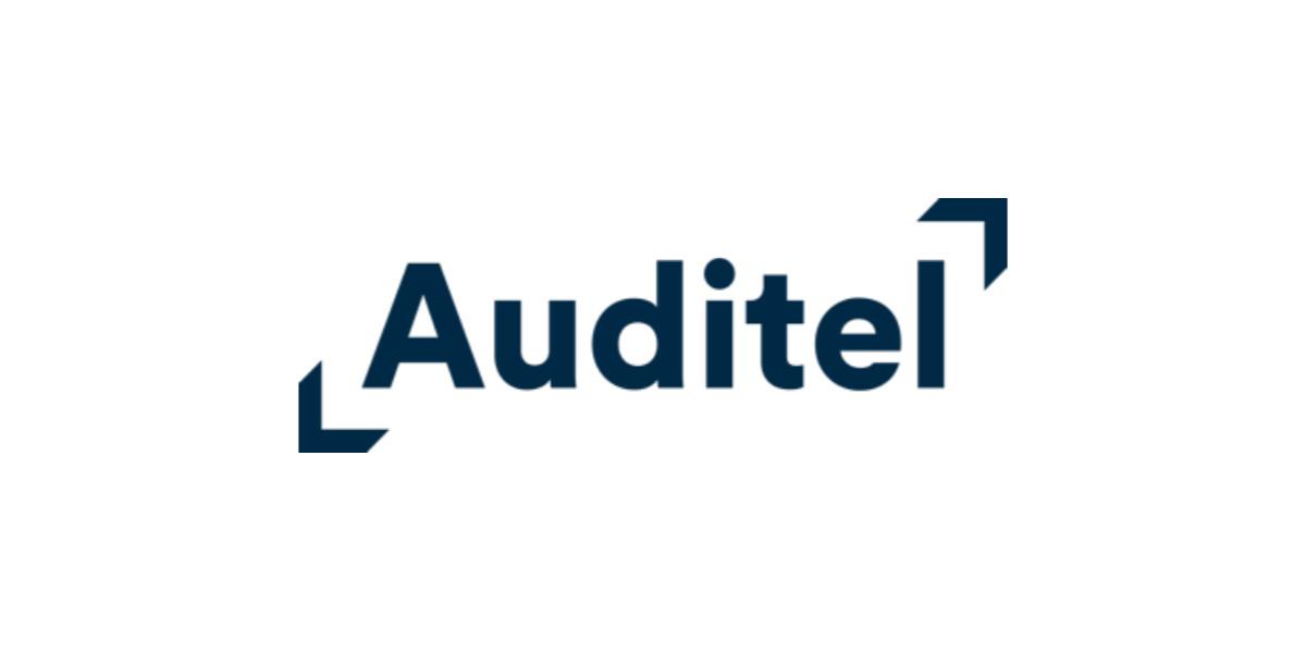 Auditel rileva e pubblica i dati sulle piattaforme digitali