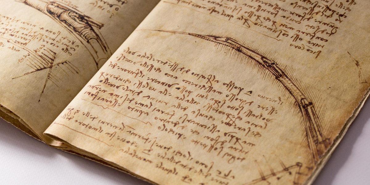 Il Codice del Volo di Leonardo in 3D