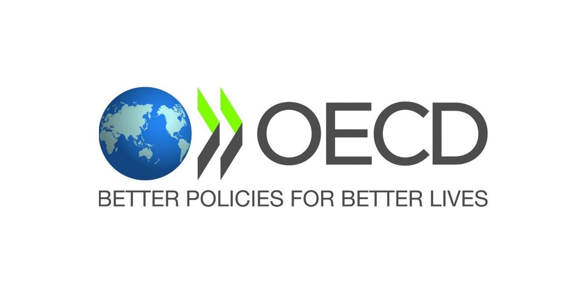 OCSE, inadeguato il livello italiano di alfabetizzazione digitale