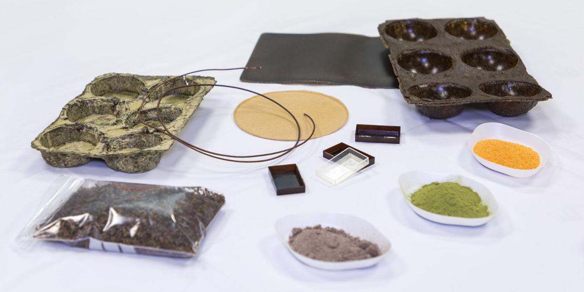 Gli scarti vegetali vengono trasformati in microparticelle di bioplastica